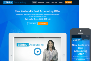 Zebra-Accounting-Design